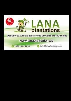 Nouvelle brochure de Lana Plantations